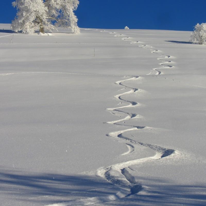 Winter outwärts