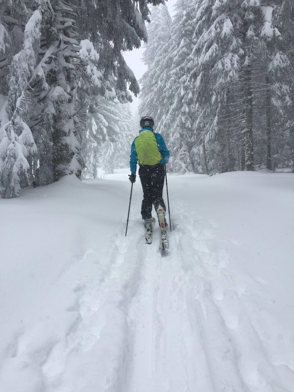 Tourenski Winter