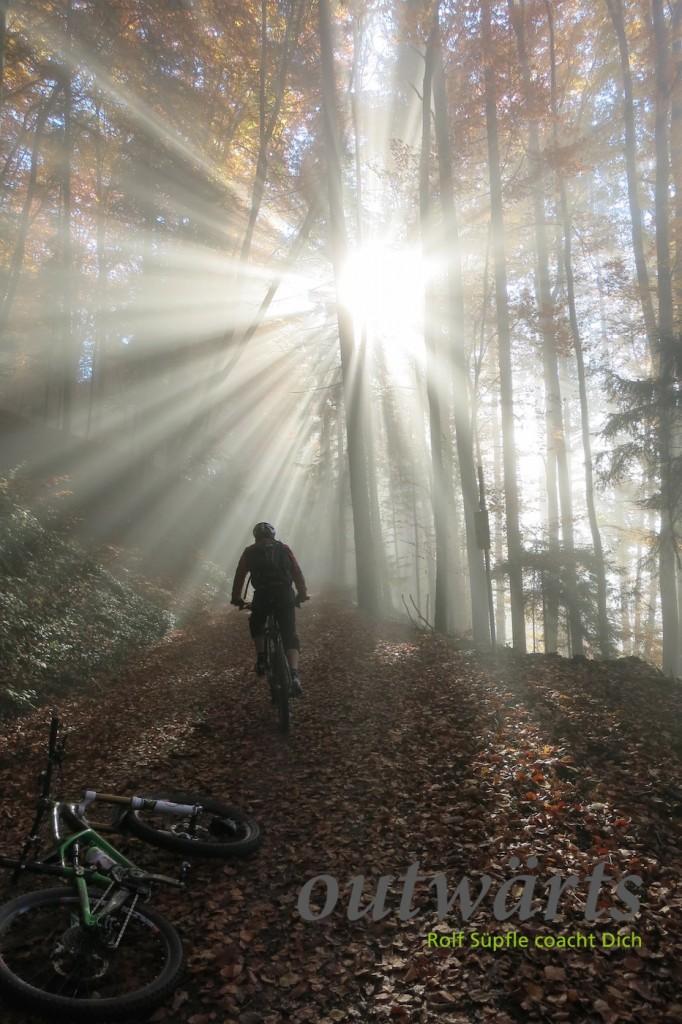 Eintauchen in die Nebelkante bei Badenweiler