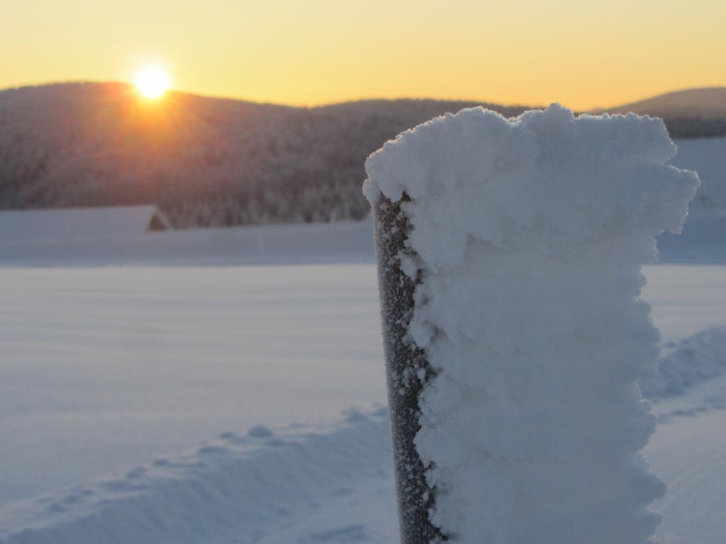 Winter_Schwarzwald 07
