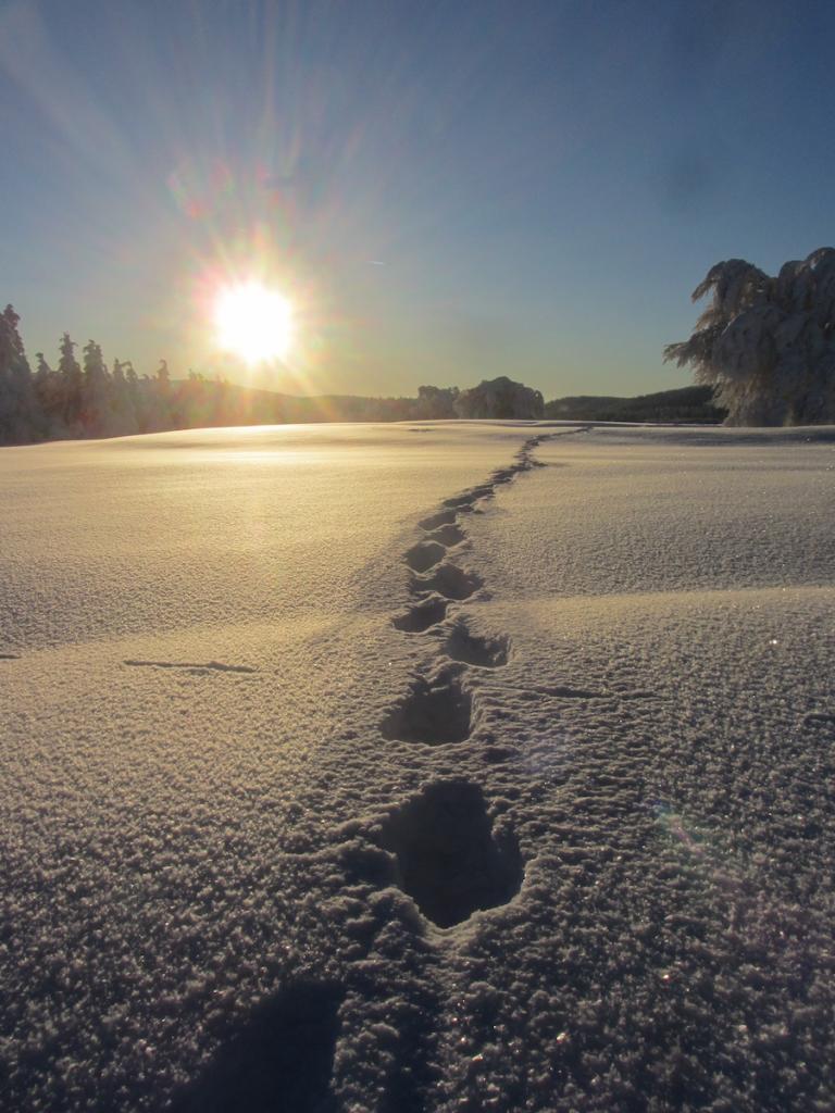Winter Schneeschuhlaufen