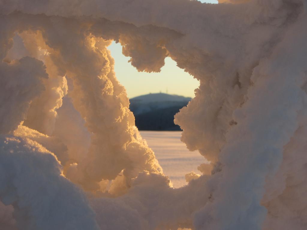Feldberg Winter